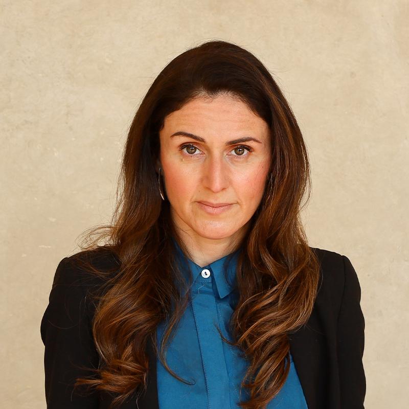 Portrait picture of Professor Jelena Dzankic