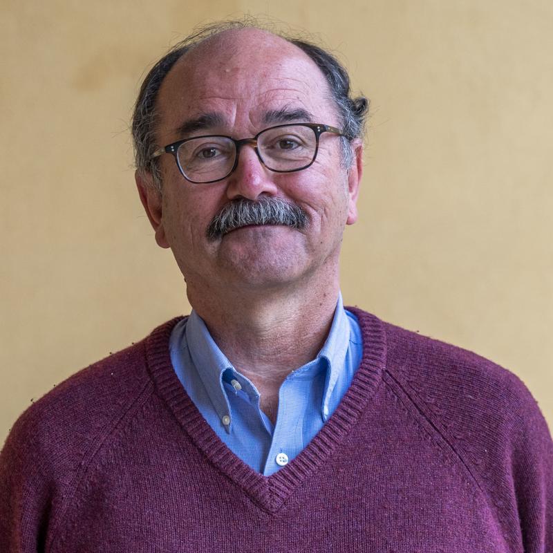 Portrait picture of Bernard Hoekman